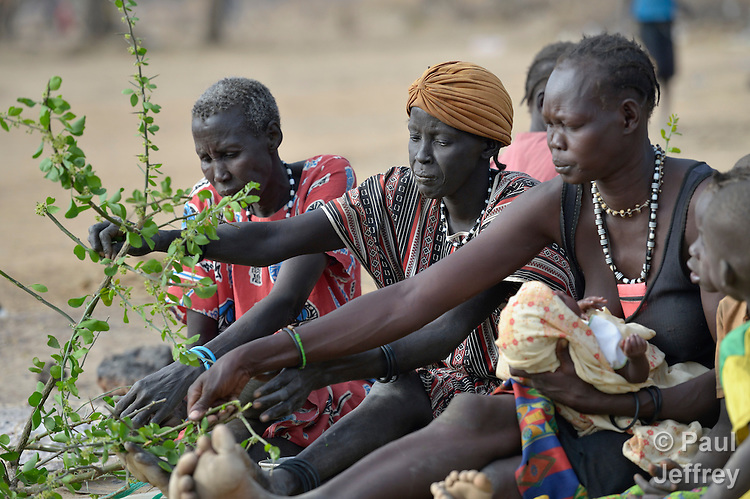 "Hungry women eat leaves from the lalob tree in a camp for internally displaced people in Manangui, South Sudan. The tree (Balanites aegyptiaca) is a common ""hunger food"" in the region."