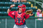 8 July 2014: Lowell Spinners catcher Jordan Procyshen in action against the Vermont Lake Monsters at Centennial Field in Burlington, Vermont. The Lake Monsters rallied in the 9th inning to defeat the Spinners 5-4 in NY Penn League action. Mandatory Credit: Ed Wolfstein Photo *** RAW Image File Available ****
