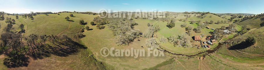 Aerial panorama of the Ellis Ranch from a sUAV/drone quadcopter during wInter calf marking and branding with the Dell'Orto outfit , Amador County, Calif.