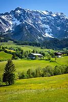 Austria, Salzburger Land, Pinzgau, farmhouses near Dienten with Hochkoenig mountains | Oesterreich, Salzburger Land, Pinzgau, Bauernhoefe bei Dienten vorm Hochkoenig (2.941 m)
