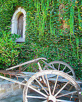 Old farm plow by ivy covered wall with boarded up window at winery in St Helena, CA wine country