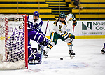 2 February 2020: University of Vermont Catamount Forward Kristina Shanahan, a Junior from Ste-Anne-de-Bellevue, Québec, works in front of the crease during second period action against the Holy Cross Crusaders at Gutterson Fieldhouse in Burlington, Vermont. The Lady Cats rallied in the 3rd period to tie the Crusaders 2-2 in NCAA Women's Hockey East play. Mandatory Credit: Ed Wolfstein Photo *** RAW (NEF) Image File Available ***
