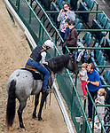 LOUISVILLE, KENTUCKY - MAY 02: Scenes from around the track as fans flock to Dawn at the Downs to catch a glimpse of the next potential Kentucky Derby and Oaks winners at Churchill Downs in Louisville, Kentucky on May 2, 2019. John Voorhees/Eclipse Sportswire/CSM