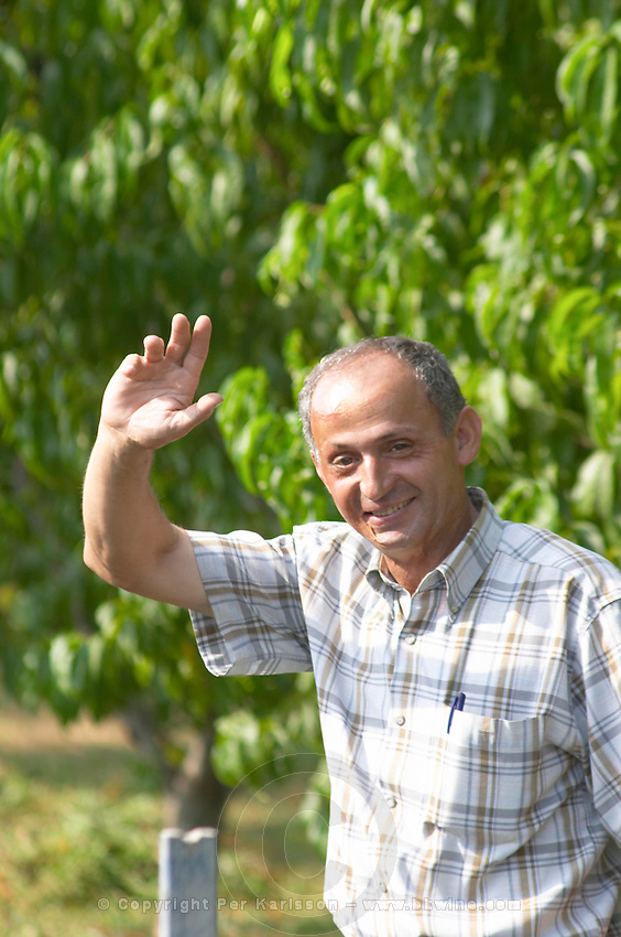 Luigj Frangaj, president of the nursery. In the vineyard. Fidal vine nursery and winery, Zejmen, Lezhe. Albania, Balkan, Europe.