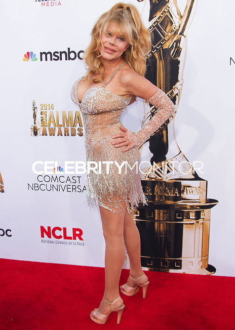 PASADENA, CA, USA - OCTOBER 10: Charo arrives at the 2014 NCLR ALMA Awards held at the Pasadena Civic Auditorium on October 10, 2014 in Pasadena, California, United States. (Photo by Celebrity Monitor)