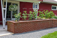 Raised bed tomato vegetable garden in front of house with hanging plants in container pot