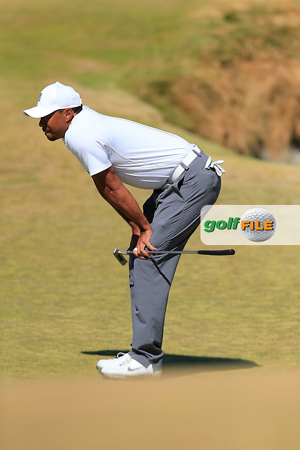 Tiger WOODS (USA) on the 17th green during Friday's Round 2 of the 2015 U.S. Open 115th National Championship held at Chambers Bay, Seattle, Washington, USA. 6/19/2015.<br /> Picture: Golffile | Eoin Clarke<br /> <br /> <br /> <br /> <br /> All photo usage must carry mandatory copyright credit (&copy; Golffile | Eoin Clarke)