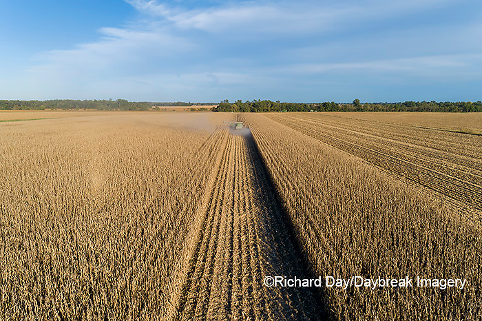 63801-13015 Harvesting corn in fall-aerial  Marion Co. IL