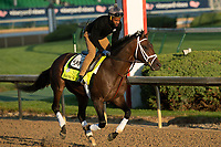 LOUISVILLE, KY - MAY 1: Magnum Moon, trained by Todd Pletcher, exercises in preparation for the Kentucky Derby at Churchill Downs on May 1, 2018 in Louisville, Kentucky. (Photo by Eric Patterson/Eclipse Sportswire/Getty Images)