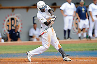 16 May 2010:  FIU's Pablo Bermudez (12) bats in the sixth inning as the FIU Golden Panthers defeated the University of South Alabama Jaguars, 5-0, at University Park Stadium in Miami, Florida.