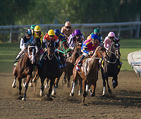 Breeder's Cup 2012