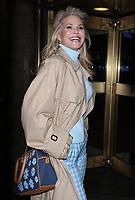Christie Brinkley Seen In NYC