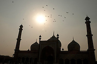 The late afternoon sun silhouettes the shape of the Jama Masjid mosque which is the largest mosque in India.