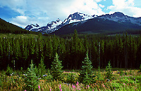 Banff National Park and the Canadian Rockies, Alberta, Canada