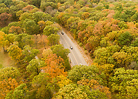 Franklin Park aerial views, autumn, Boston, MA  (F L Olmsted = landscape architect) Jamaica Plain