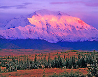 Alpenglow on Denali (Mount McKinley), Denali National Park & Preserve, Alaska