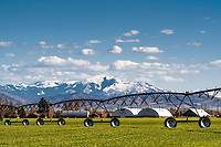 Irrigation on a grain farm in Firth Idaho. Firth is just west of the Caribou Mountains.