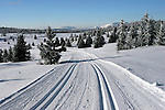 Cross-country skiing in the beautyfull tracks at Venabygdsfjellet, Norway