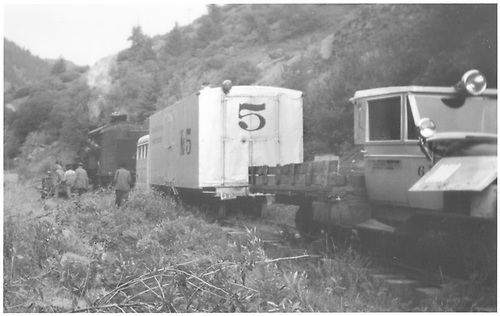 Geese #5 and #6 with unidentified steam engine.<br /> RGS