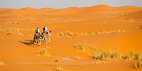Panoramic photo of a tourist couple on a camel ride in Erg Chebbi Desert, Sahara Desert near Merzouga, Morocco, North Africa, Africa. This photo of tourists on a camel ride was taken in Erg Chebbi, the desert with the largest sand dunes in Morocco. Erg Chebbi is Saharan desert and has sand dunes that reach over 150m at the summit. Taking a camel ride into the Erg Chebbi is a bumpy but exciting experience. Do not miss out on an Erg Chebbi desert trip if you visit Morocco!