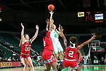 DENTON, TX - JANUARY 18: North Texas Mean Green Women's Basketball team v LATECH at Super Pit - North Texas Coliseum on January 18, 2020 in Denton, Texas.