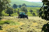 Alpe making hay, Lancashire.