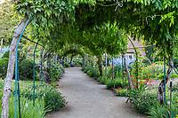 France, Cher (18), Apremont-sur-Allier, labellisé Plus Beaux Villages de France, Parc floral d'Apremont-sur-Allier,