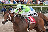 January 15, 2015: Sr. Quisqueyano ridden by Edgard Zayas upsets the field to win the $250,000 Sunshine Millions Classic at Gulfstream Park. Gulfstream Park, Hallandale Beach (FL). Arron Haggart/ESW/CSM