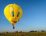 A near record crowd hot air balloon fans filled the hillsides at the National Balloon Classic launch field July 29 for opening ceremonies, balloon launches and music. The crowd watched balloons and the balloons watched back.