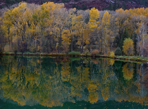 Fall colors are reflected on a pond in The Rocky Mountains of Colorado