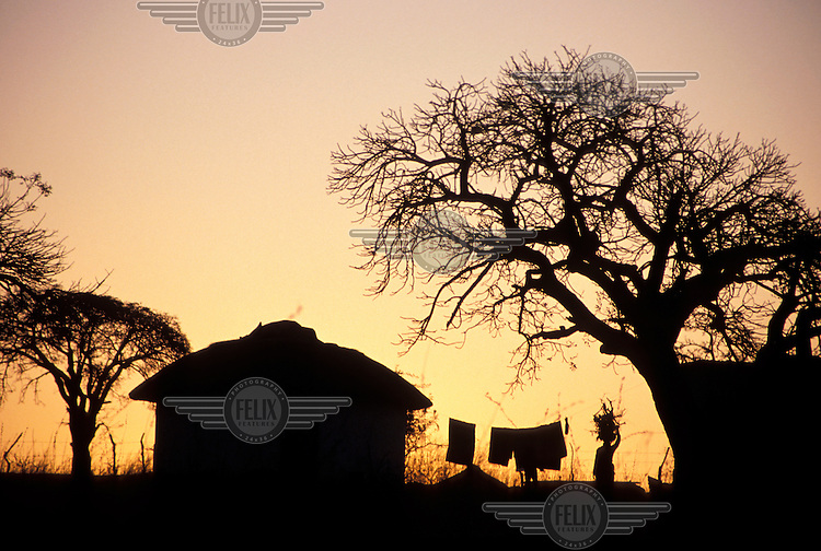 Woman collecting firewood and washing line at sunset outside a village hut.