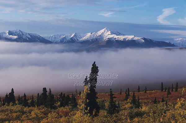 Mountain range and fog, Alaska, USA