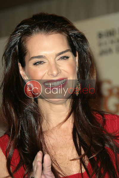 Brooke Shields <br /> at the 66th Annual Golden Globe Awards Nomination Announcement Press Conference. Beverly Hilton Hotel, Beverly Hills, CA. 12-11-08<br /> Dave Edwards/DailyCeleb.com 818-249-4998
