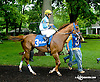 Galiana before The Dashing Beauty Stakes at Delaware Park racetrack on 6/12/14