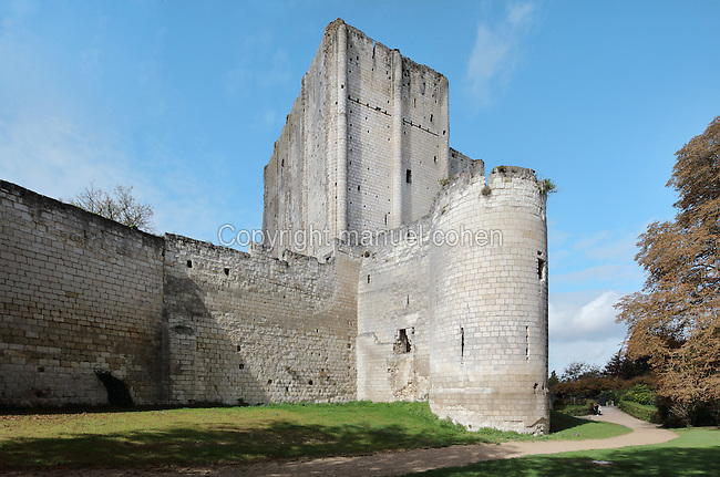 The Chateau de Loches, with its massive stone keep and ramparts, a medieval castle in the Loire Valley consisting of the old collegiate church of St Ours, royal lodge and keep, at Loches, Indre-et-Loire, Centre, France. The chateau was built in the 9th century and the keep in 1013 by Foulques Nerra, Count of Anjou. The 4-storey keep is 23m high with walls 2.8m thick. The chateau is listed as a historic monument. Picture by Manuel Cohen