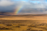 Rainbow in the Kigluaik mountains, Seward Peninsula, Arctic, Alaska.