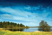 Fannyside Loch, Palacerigg Country Park, Cumbernauld, North Lanarkshire