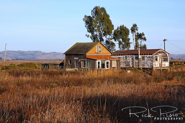 Sitting in the marshes north of San Pablo Bay, along the banks of Sonoma Creek, sits the tiny ghost town of Wingo. Now home to a handful of residents, Wingo was once a railroad connection point for visitors arriving by steam boat from San Francisco.