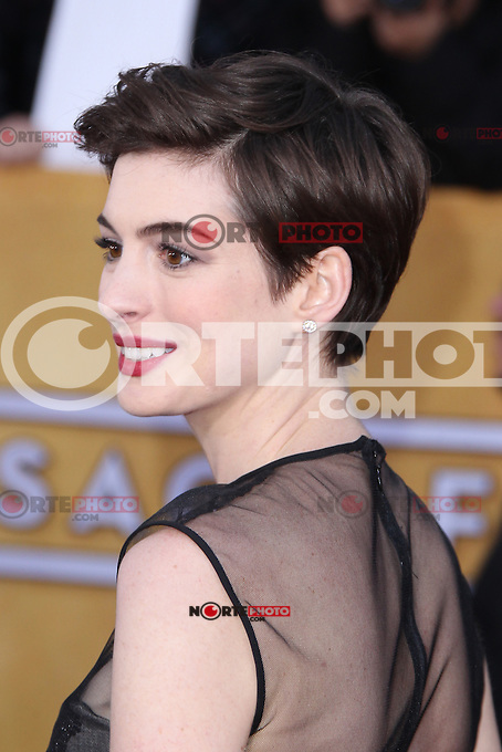 LOS ANGELES, CA - JANUARY 27: Anne Hathaway at The 19th Annual Screen Actors Guild Awards at the Los Angeles Shrine Exposition Center in Los Angeles, California. January 27, 2013. Credit: MediaPunch Inc.