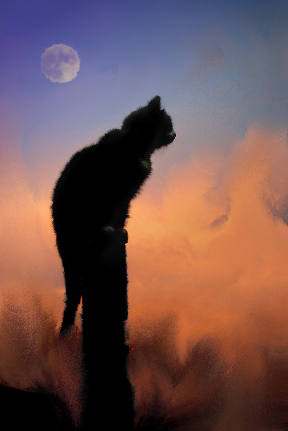 Cat on top of pole with moon