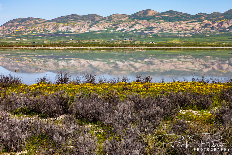 The Temblor Range reflects in Soda Lake at Carrizo Plain National Monument in California.