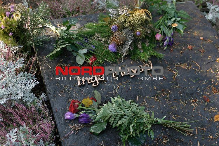 Grab von Inge Meysel auf dem Friedhof Ohlsdorf in Hamburg<br /> Grab, von hohen Baeumen beschattet, mit Hartgewaechsen eingefasst, einige Blumenstraeusse auf der Grabplatte. Auf dem Stein stehen die Namen von Inge Meysel und ihrem Ehemann John F. Olden in Messingbuchstaben.<br /> <br /> <br /> Foto &copy; nordphoto / Volker Sarbach<br />  *** Local Caption *** Foto ist honorarpflichtig! zzgl. gesetzl. MwSt.<br />  Belegexemplar erforderlich<br /> Adresse: nordphoto<br /> Georg-Reinke-Strasse 1<br /> 49377 Vechta