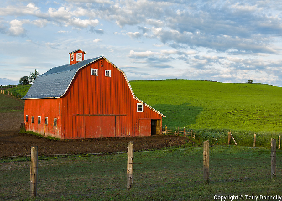 Whitman County, WA<br /> Red barn with gambrel roof under morning clouds with rolling hills of the Palouse in the background
