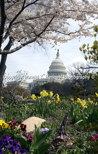 United States Capitol Washington DC, Washington DC, Politics in the United States, Presidential, Federal Republic, united States Congress, Fine Art Photography by Ron Bennett, Fine Art, Fine Art photo, Art Photography,