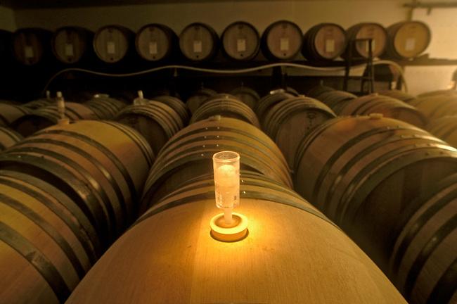Fermentation lock on barrels at Long Vineyard