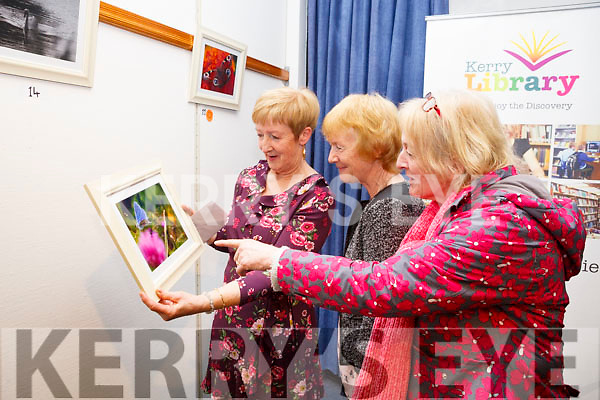 Catherine Dolan at her Photographic Exhibition in the Tralee Library on Tuesday night, where the proceeds of the event went to theTralee/West Kerry Multiple Sclerosis branch. L-r, Catherine Dolan, Veronica Curtain and Jackie Linnane as Catherine displays her favourite photo, The Common Blue Butterfly, My Beauty.