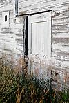 September 2009:  An aging white barn near Steamboat Springs, CO.