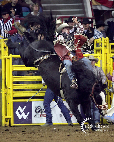 1/24/09--Photo by Rick Davis--PRCA cowboy John Addison of Belvidere, South Dakota scores a 76 point bareback bronc ride on the Calgary Rodeo Company bronc Loadstone Jade during action at the 103rd National Western Stock Show and Rodeo in Denver, Colorado.