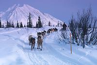 R Brooks on Trail near Rainy Pass Ckpt 2000 Iditarod AK