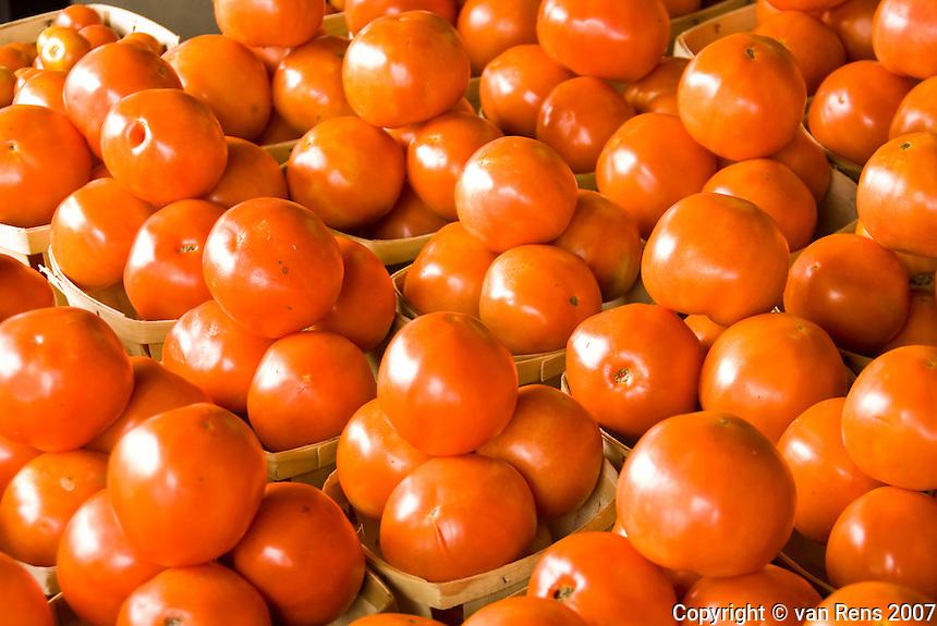 Tomato array in Midwestern farm market.